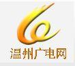 WZTV 2 (China)