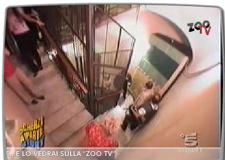 Lo Zoo in TV (Italy)